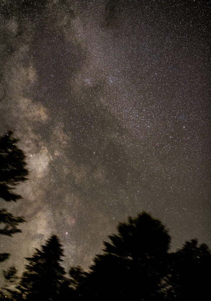Milky Way between the trees, July 7, 2020