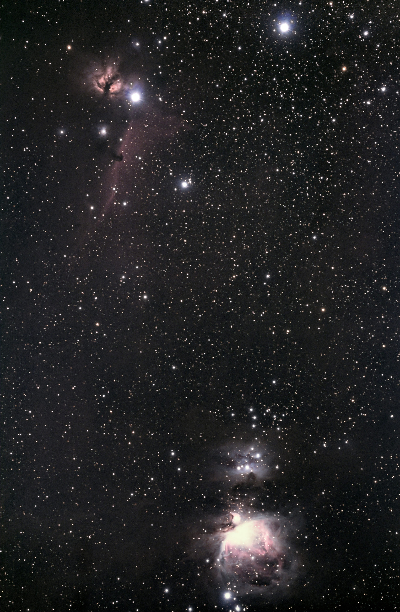 Orion Complex, taken in December 2019