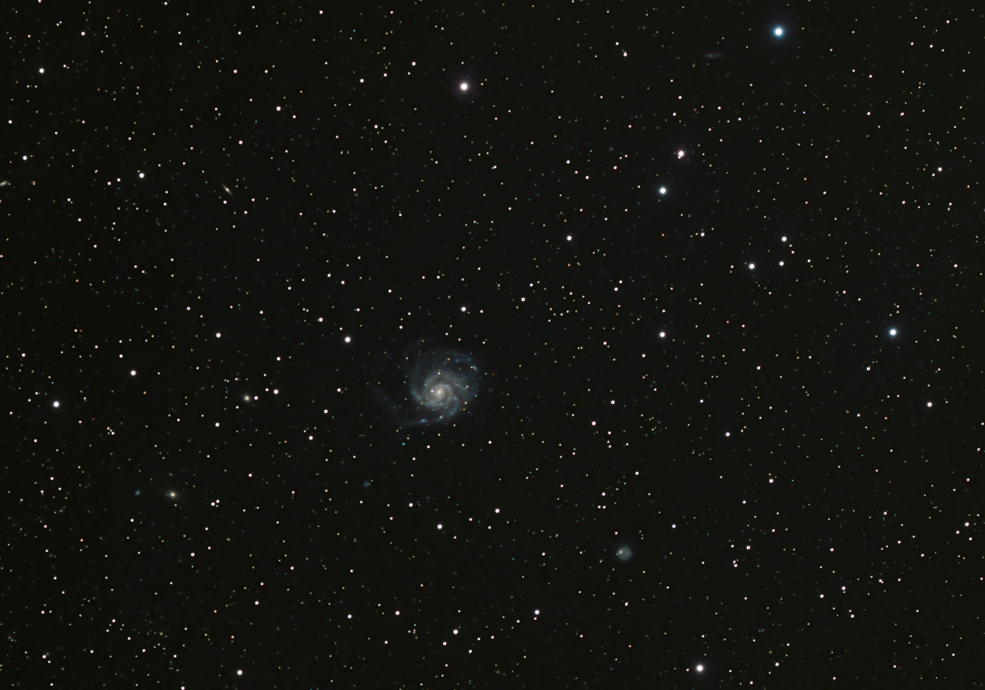 Pinwheel Galaxy in Widefield