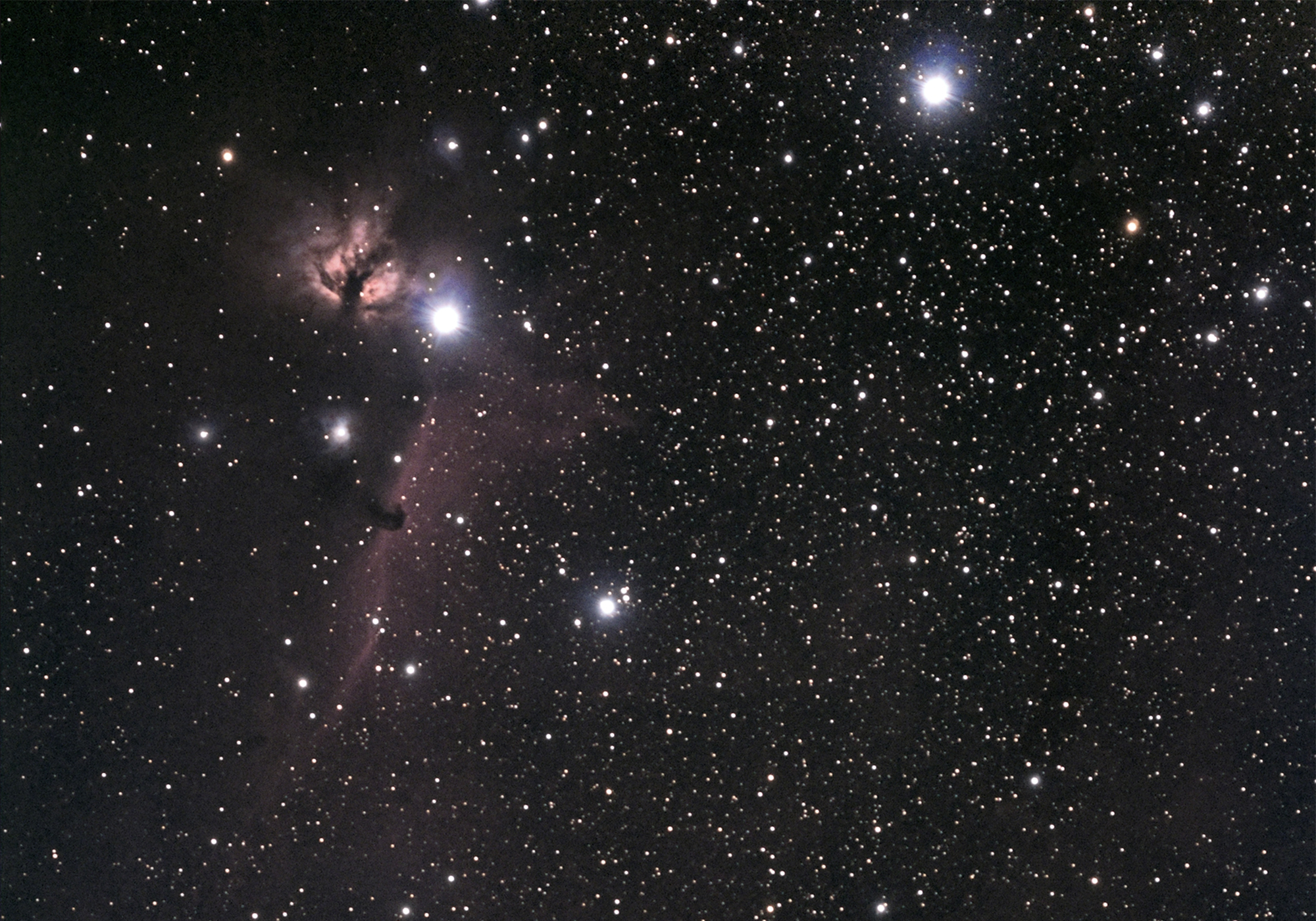 Orion's Belt with Flame & Horsehead Nebula